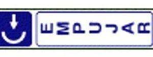 Se__ales_segurid_4f4531cc8a780.jpg