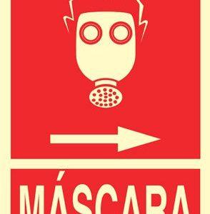Se__al_Mascara___4f43c8ee121ec.jpg